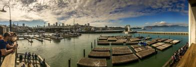Pier 39, Fishermans Wharf